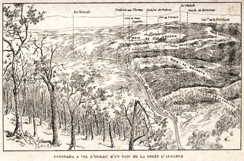 A view of the Argonne battlefield