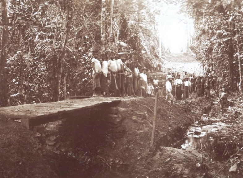 A bridge on the road from Sakbajeme to Edea under construction in 1909. Note the narrow track and limited sightlines that make ambushes effective against long, single- or double-file columns