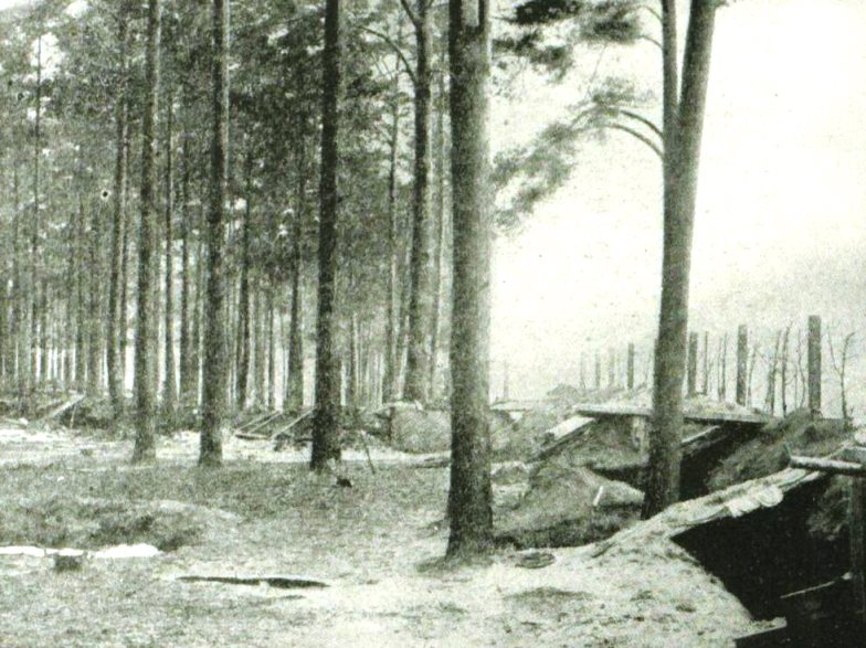 An abandoned Russian position in the Augustow Forest