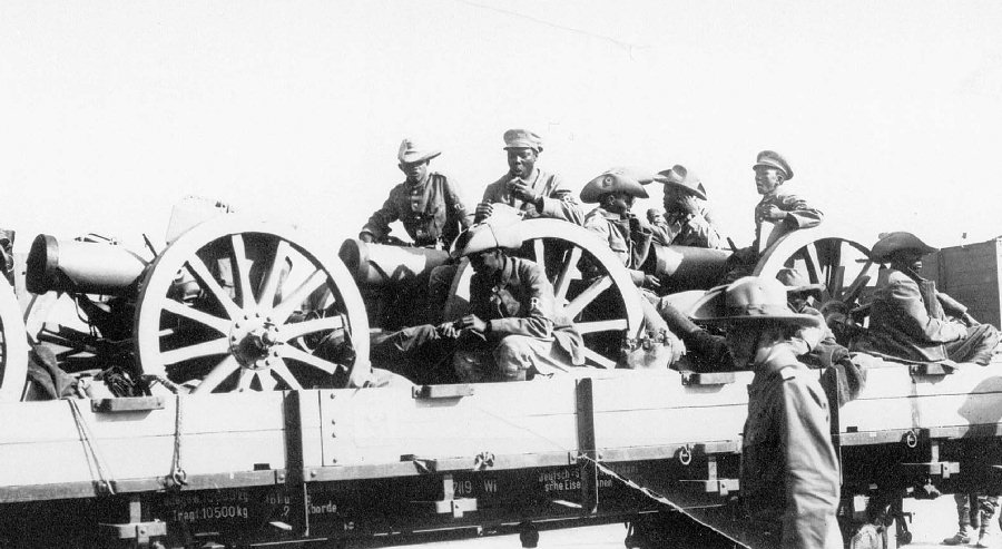A German ox-drawn artillery battery manned by native troops