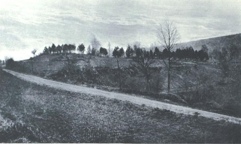 Hill 132